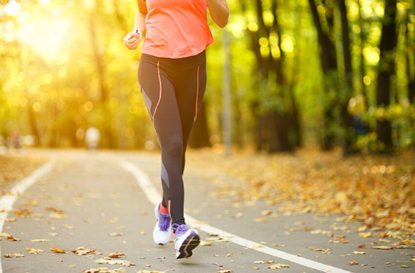 سهار مهال ورزش کول کومې ګټې لري؟